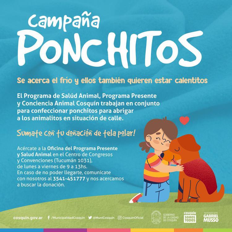 campaña ponchitos